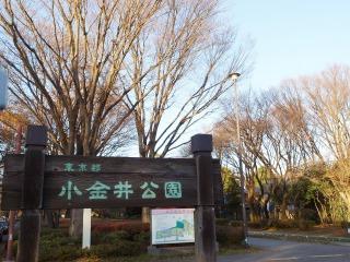 小金井市イメージ